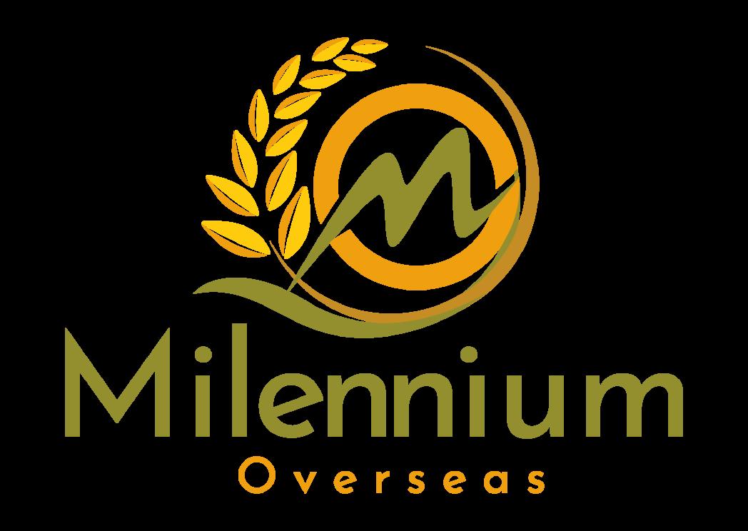 Milennium Overseas